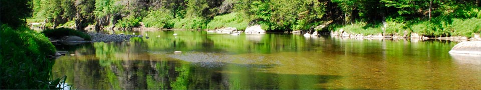 Remote Beauty of the Westfield River